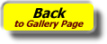 Gallery_Back